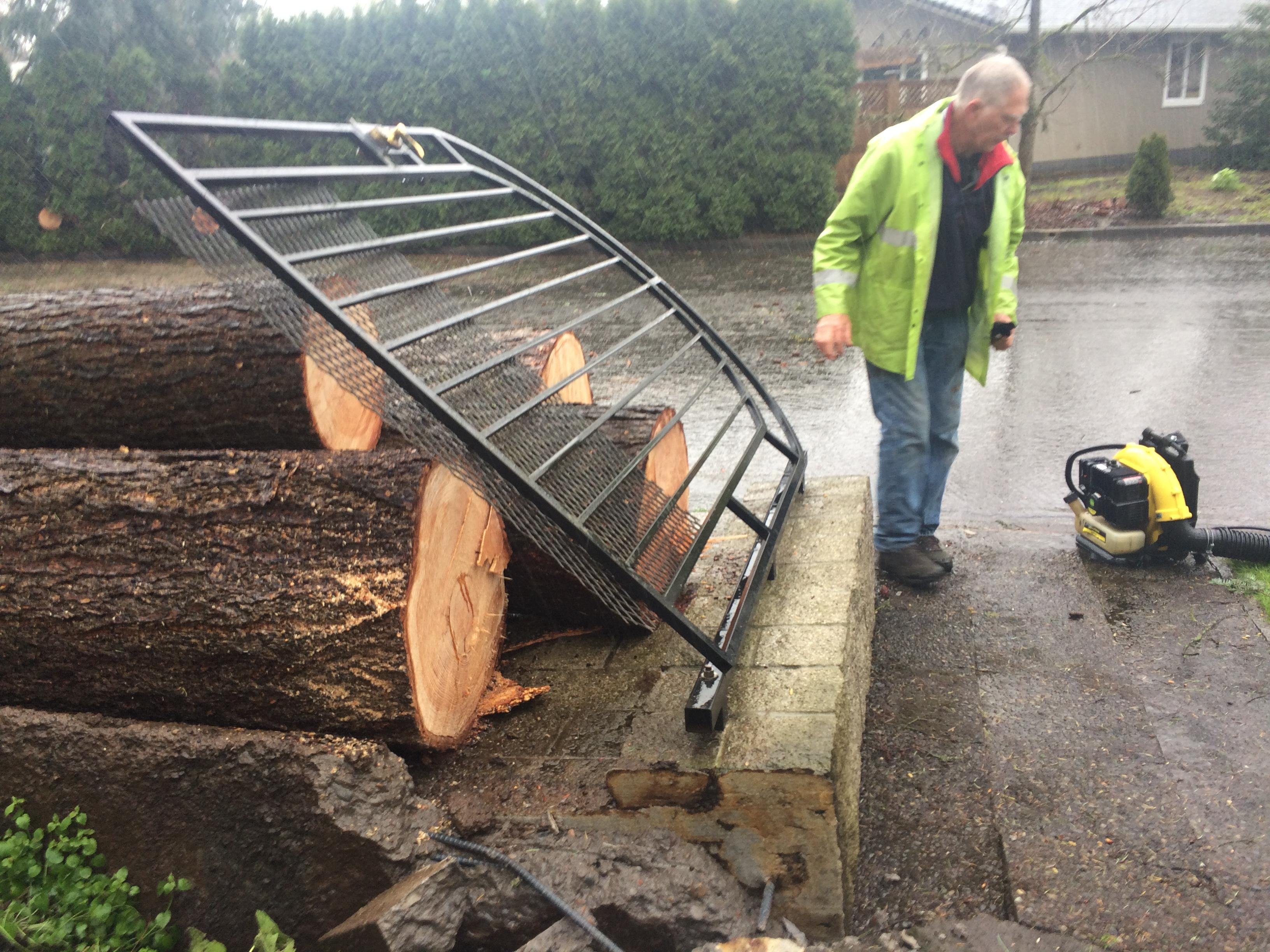 Across Eugene, residents woke up Friday morning to find damaged and downed trees littering the streets. (SBG photo)