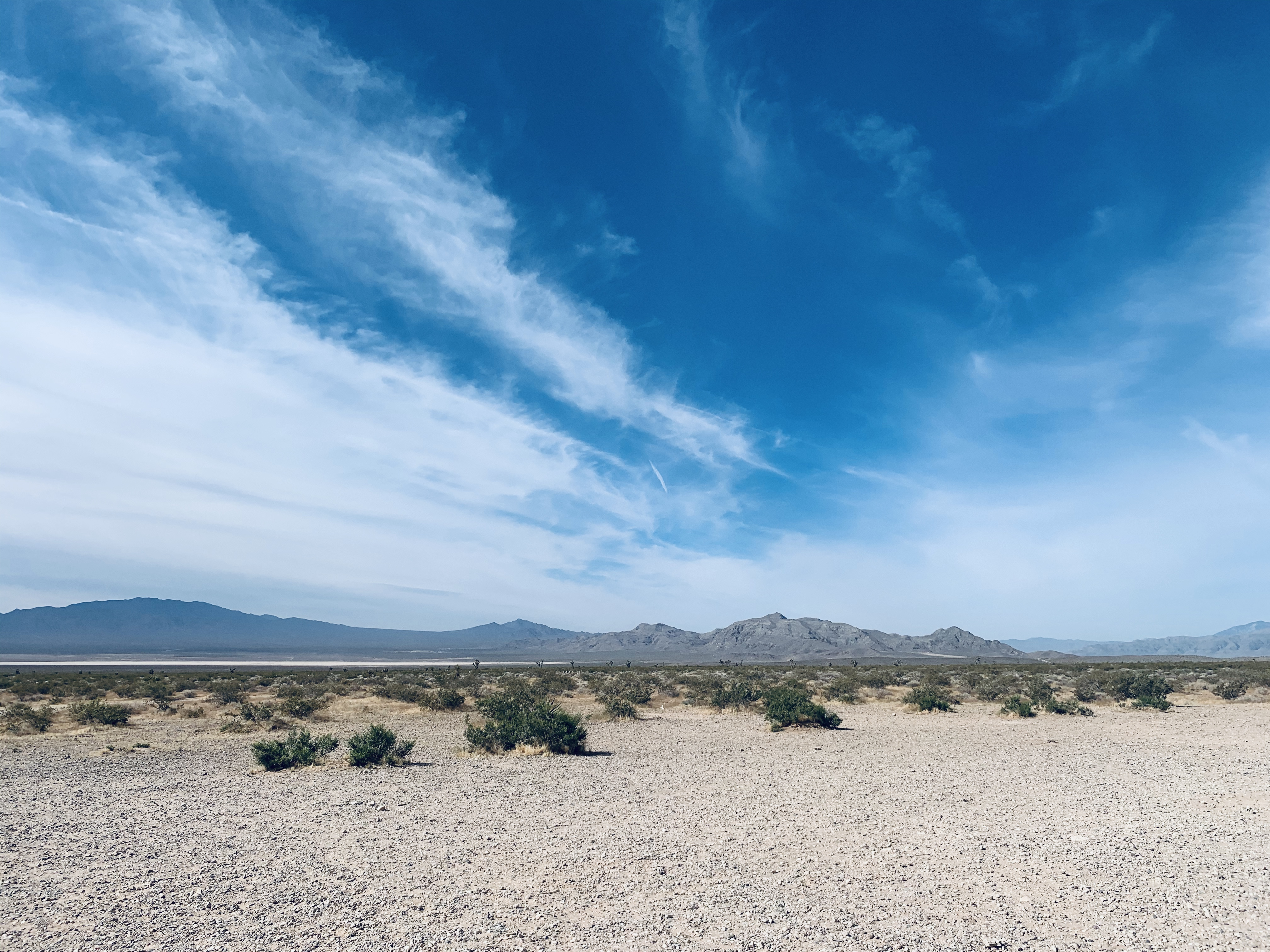 The desert with Jean Dry Lake in the distance.{ }(Shannon Kelly/NSN)