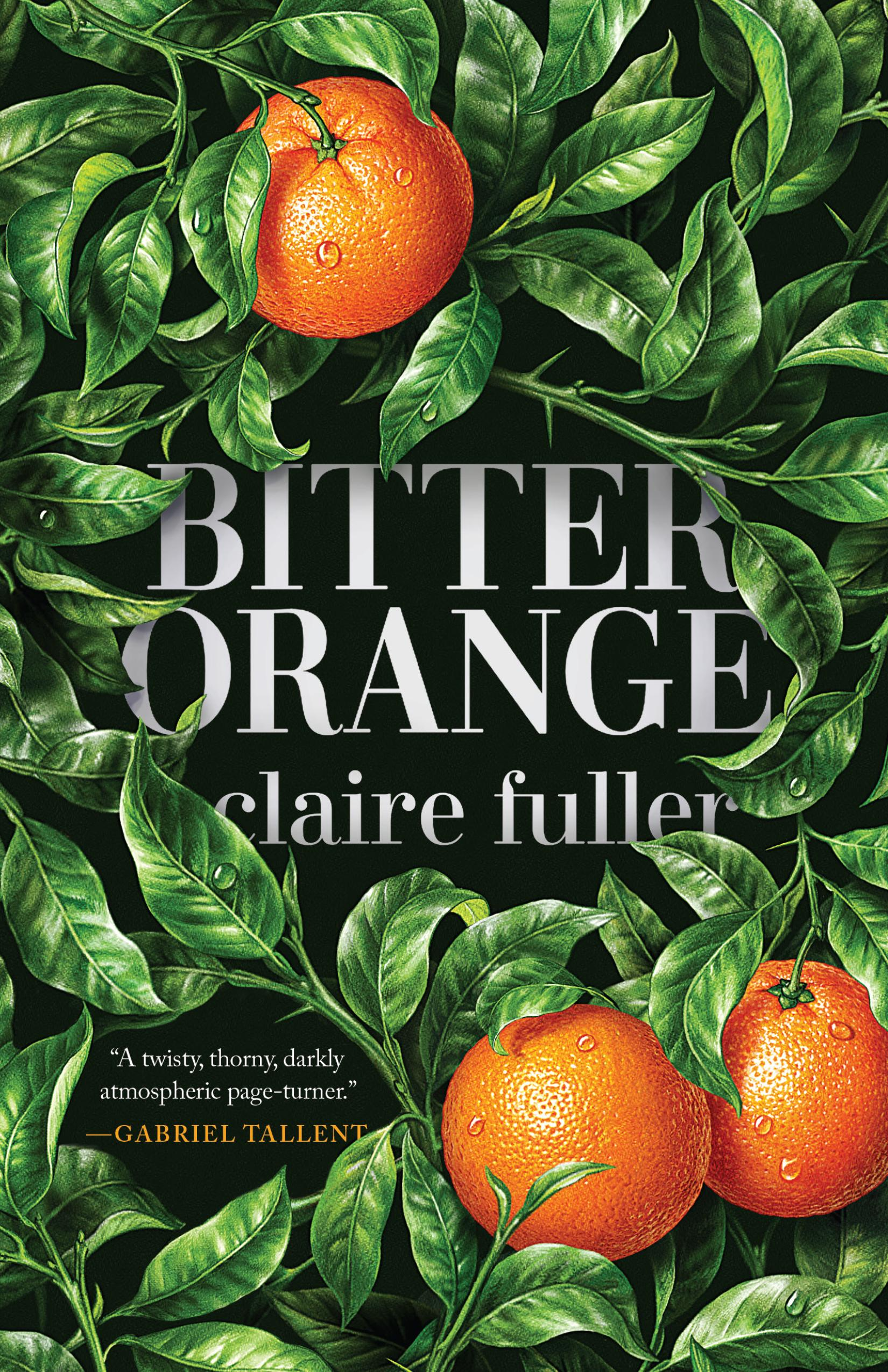 "<p>""Bitter Orange"" by Claire Fuller (Image: Courtesy Tin House Books)</p>"